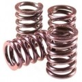 Barnett Performance Clutch Spring Set for DL650 V-Strom 04-09