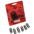 EBC CSK Clutch Spring Set for CBR954RR 02-03