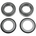 Moose Racing Steering Stem Bearing Kit for TE 511 12-13