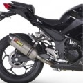 Akrapovic Dual Slip-on Line Exhaust for Ninja 300 13-14 (Closeout)
