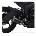 "Two Brothers M2 Slip-On Exhaust 10"" for ZX6R 13-15"