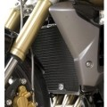 R&G Radiator Cooler Guard for Street Triple R 675 13-15