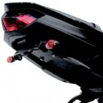 Targa Tail Kit Fender Eliminator for FZ8 11-13
