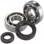 Moose Racing Crank Bearing Kit for TE 250/300 11-13