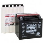 Yuasa AGM (Maintenance-Free) Battery for TE 610E 00-01