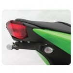 Targa Tail Kit for 250R 08-12